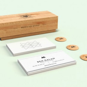 Brown Fox - Graphic Design and Advertising Agency Identity