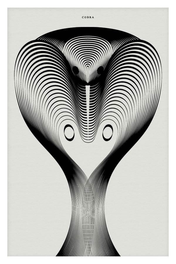 Cobra - Vector Illustration by Andrea Minini