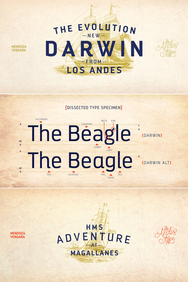 Darwin font family from Los Andes