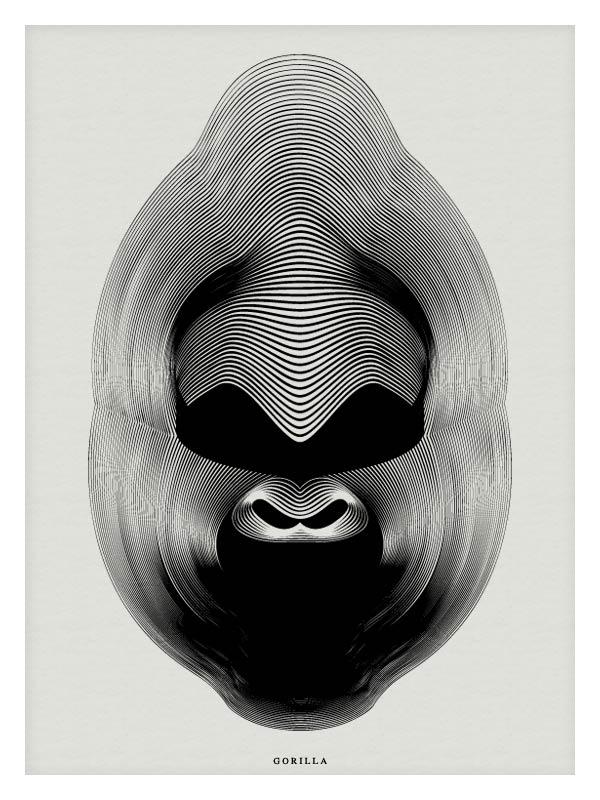 Gorilla - Vector Illustration by Andrea Minini