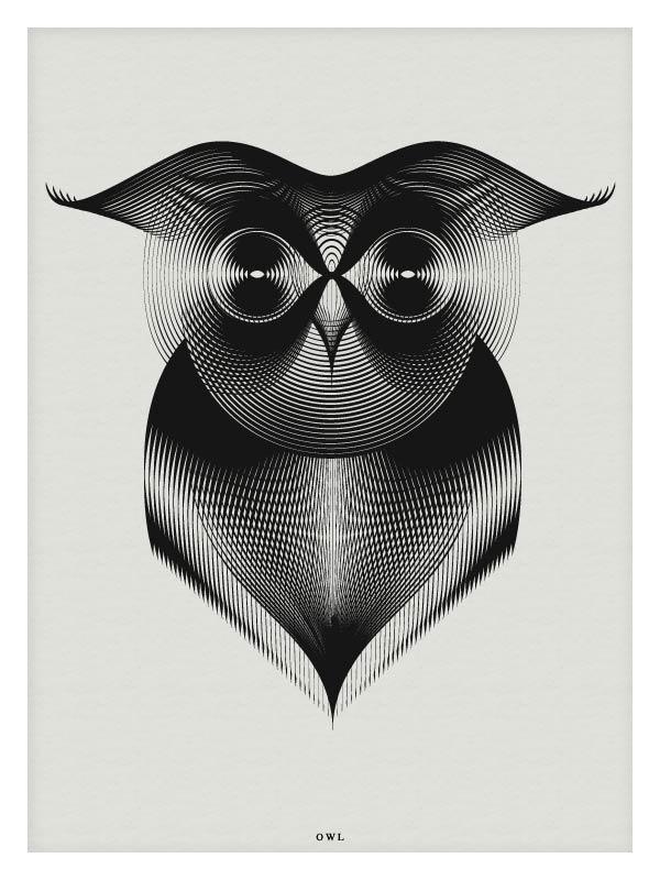Owl - Vector Illustration by Andrea Minini
