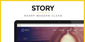 Story - Responsive Multi-Purpose WordPress Theme