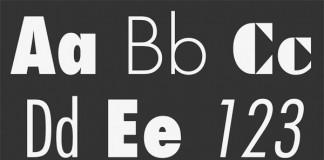 The Futura font family from Linotype.