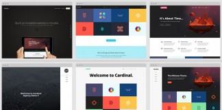 Cardinal WordPress theme, a responsive and Retina-ready WordPress theme with different designs for multi-purpose.