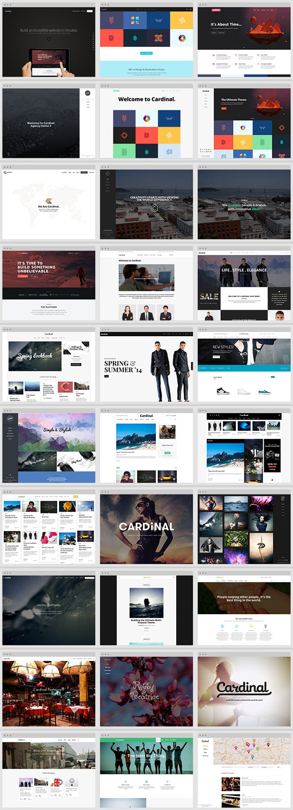 Cardinal WordPress Theme for Multiple-Purpose
