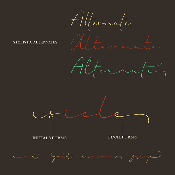 Stylistic alternates of the script typeface.
