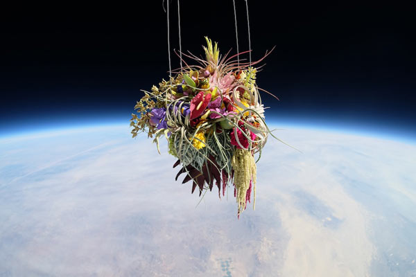 Plants on a botanical space flight, realized by Japanese artist Azuma Makoto and his crew.