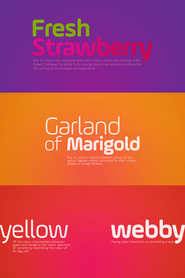 Ample Soft Font Family from Soneri Type