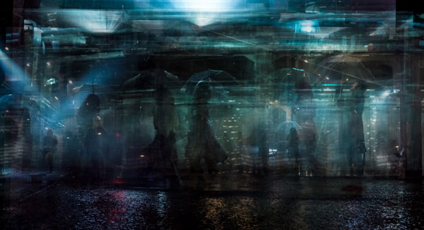 Electric Sheep Series - Fine Art Photography by Riccardo Magherini