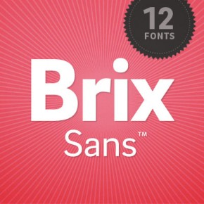 Brix Sans Type Family from HVD Fonts