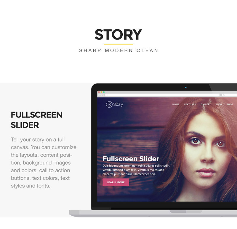 Story – Creative WordPress Theme for Multi-Purpose