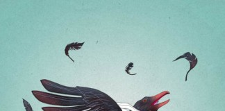 Ruffled Feathers - Illustrated artwork by Michael Wandelmaier.