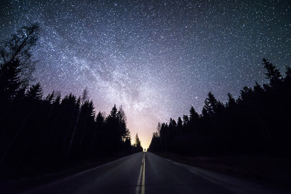 Starry sky, forest, and a road at night.