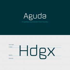 Aguda Font Family from Graviton