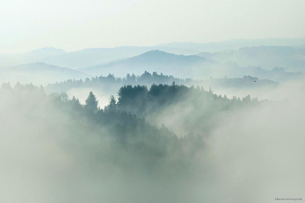 Foggy landscape captured by Kilian Schönberger, a photographer from Cologne, Germany.