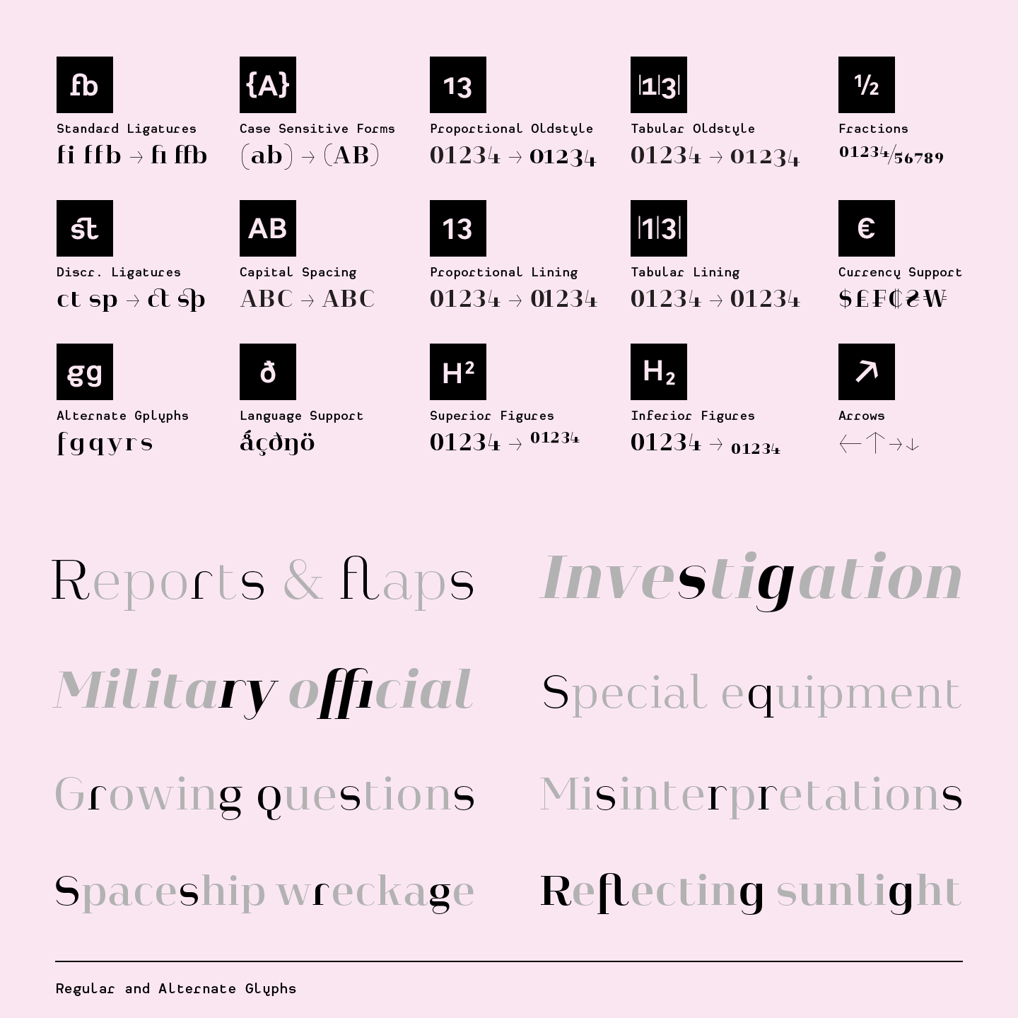 OpenType features as well as regular and alternate glyphs.