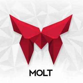 Molt - Corporate Identity by Bruno do Nascimento