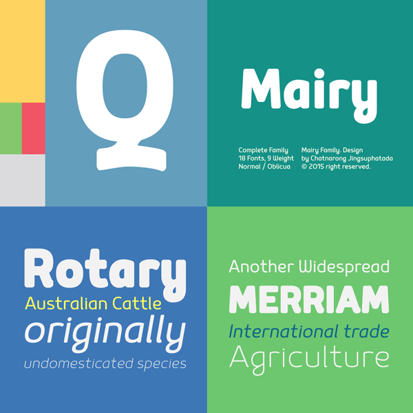 Mairy Font Family from Typesketchbook