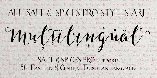 All styles are multilingual, the family supports 56 Eastern and Central European languages.