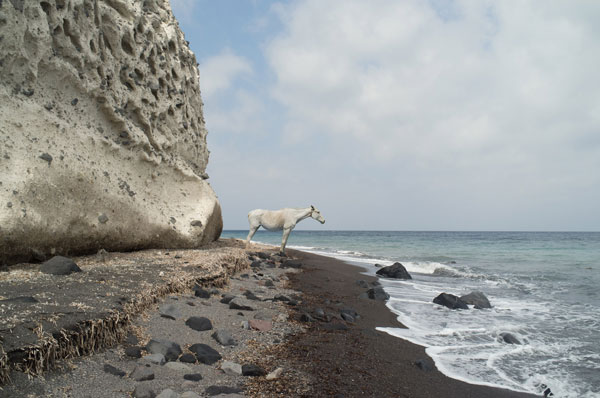 Horse at the sea - VEDEMA photo series by Petros Koublis for the Greek island of Santorini.