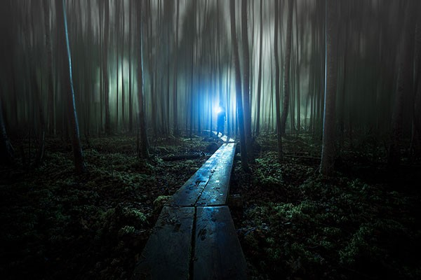Night photography in a dark forest by Mika Suutari.