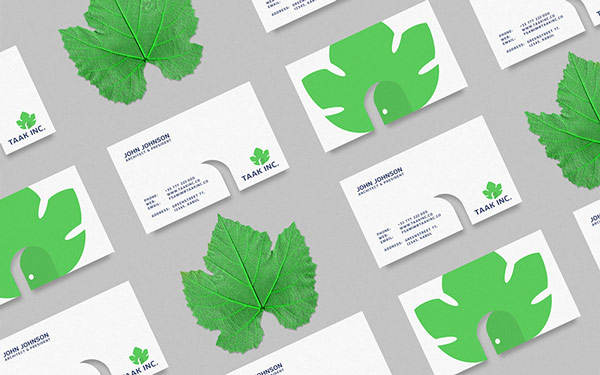 Business cards with the green wine leaf logo.
