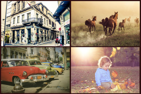 Perfect light and colors - create beautiful images with ease.