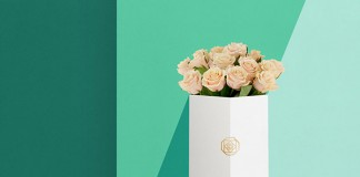 Art direction, branding, and graphic design by Daria Po for Vklumbe, a flower delivery service in St. Petersburg, Russia.