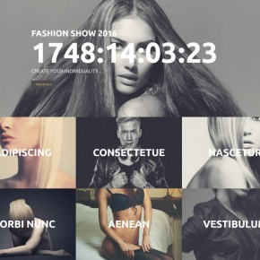 Fashion WordPress Theme with a 100 % Responsive Design