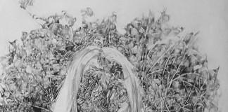 Work from 2015 by Dansk artist Anouk Griffioen.