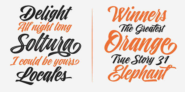 A brush script font family with diverse styles.