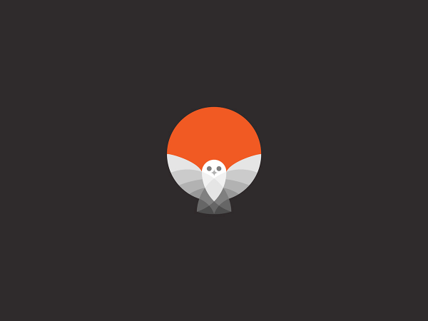 Owl logo created from simple graphic shapes and circles.