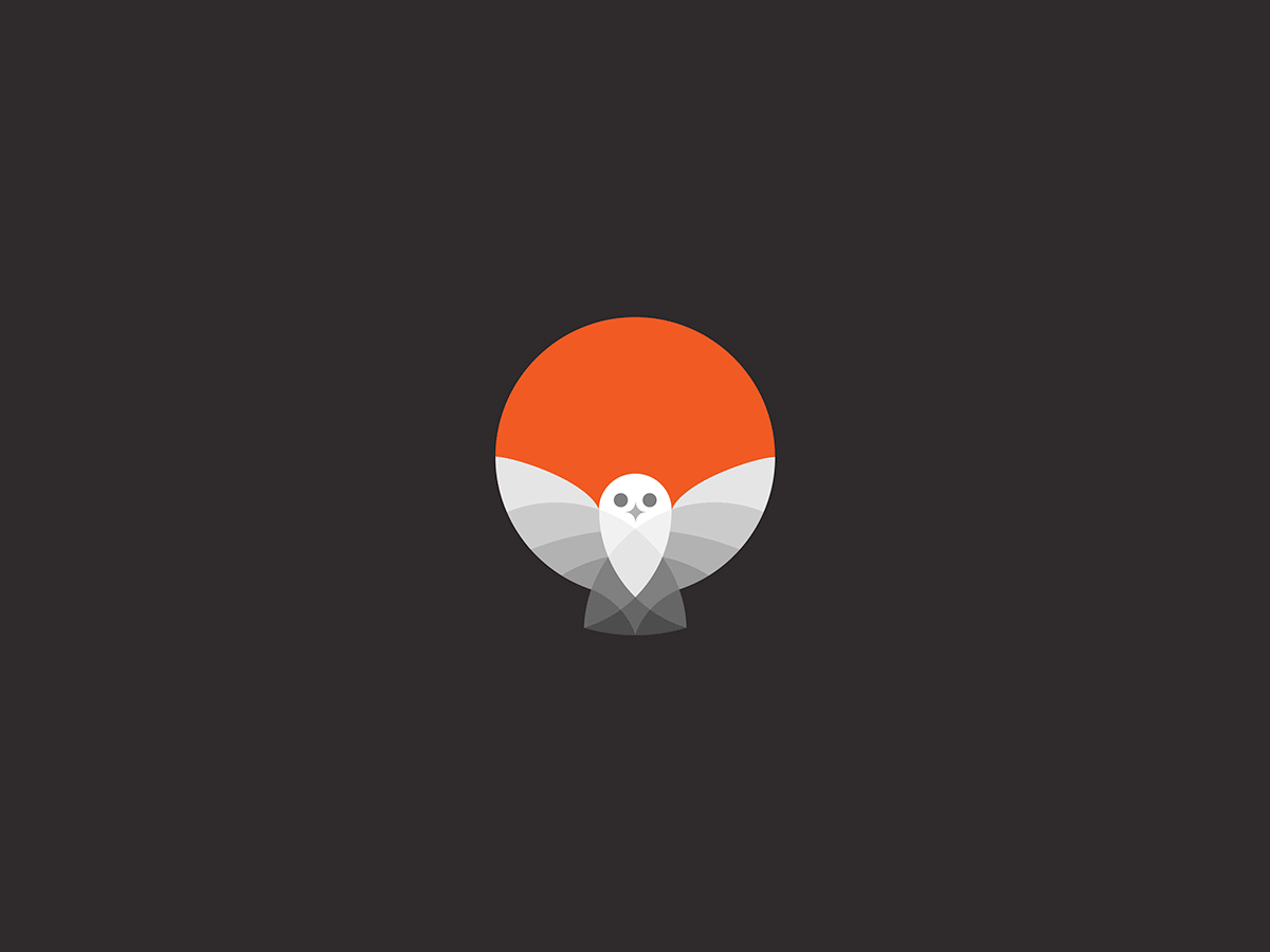 Beautiful Bird Logos by George Bokhua