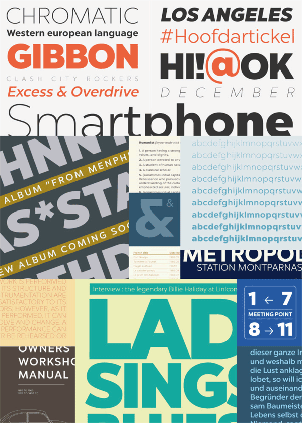 Chronica Pro Font Family from Mostardesign
