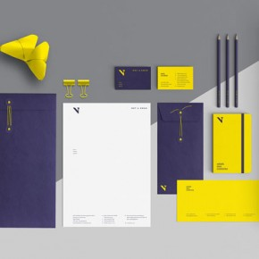 NOT A SWAN - Branding by Magnetic Stories
