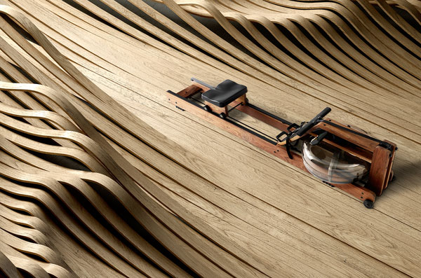 Rowing Machine by John Duke - Work from a series of 10 luxury items.