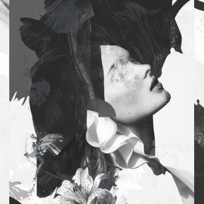 Collages by Raphael Vicenzi