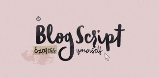 Blog Script, a hand drawn typeface from Sudtipos.