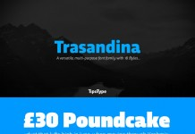Trasandina is a versatile, multi-purpose font family with 18 styles.