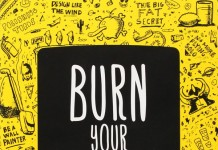 Burn Your Portfolio: Stuff they don't teach you in design school, but should, a book by Michael Janda. This is a WE AND THE COLOR book review