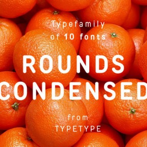TT Rounds Condensed Font Family from TypeType