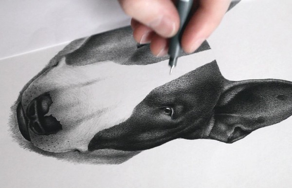 The dog drawing was created with a pen (Staedtler Pigment Liners Marker Pen).