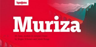Muriza, a modest slab serif from TypeMates with tempestuous curves and clear geometric shapes.