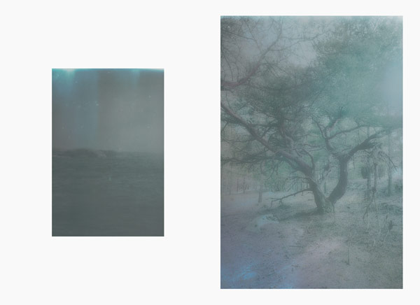 Two Impressions of photo series Nordkoster by photographer Fredrik Altinell.