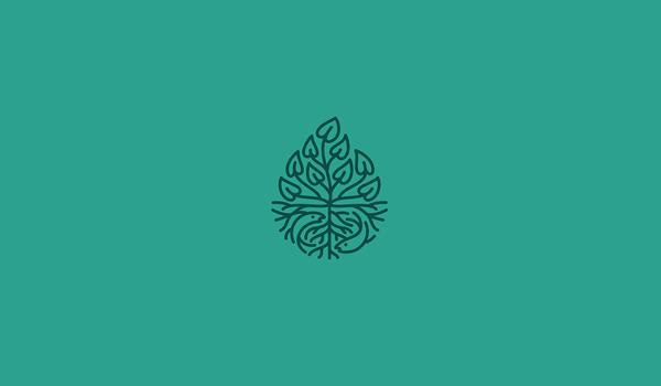 Logo design for ManaWai, a Hawaian aquaponics farm.