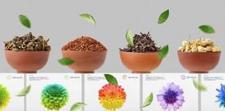 フォーハーツ - Fohatsu, a new Tokyo, Japan based manufacturer of high quality herbs for tea.
