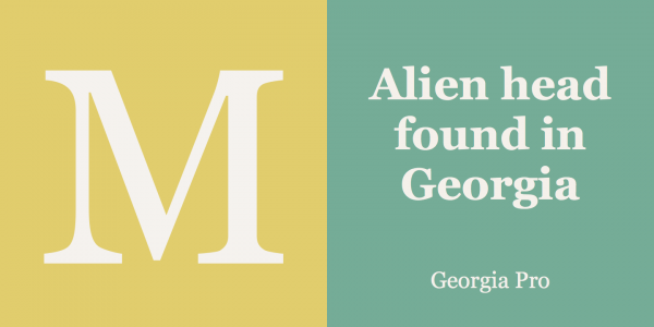 Georgia has been designed to offer an on-screen display font with elegant yet sturdy and open forms.