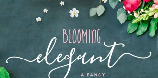 Blooming, an elegant font trio created by Nicky Laatz.