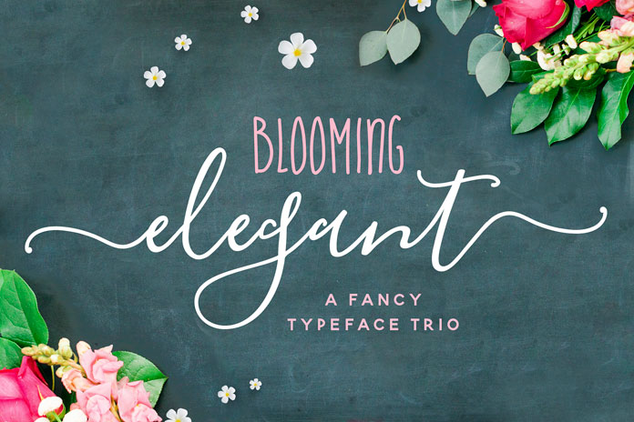 Blooming Elegant An Font Trio Created By Nicky Laatz