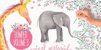 Lovely illustrator watercolor elements of animals, flowers, logos, and much more.